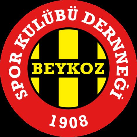 Beykozspor logo